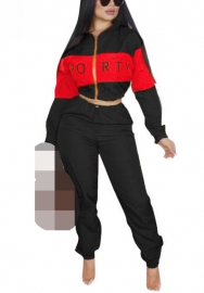 Women Fashion Front Zipper Long Sleeve Crop Tops and Long Pants 2 Piece  Suit