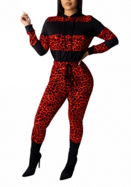 Women Fashion Print Leopard Contrast Color Long Sleeve Round Neck Tops and Long Pants  Tracksuit Suit